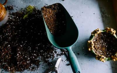 XOCOLATL – Chokolade fra Christiansfeld